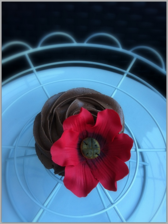 Cupcakes de vainilla con amapolas